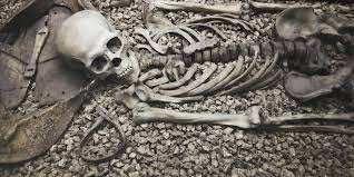old-bone