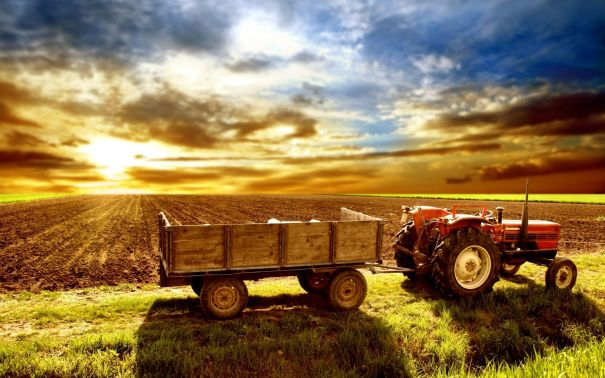 tractor,-sunset-in-the-field,-field-208595